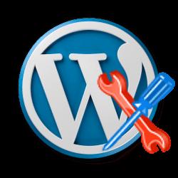 Assistenza Wordpress Roma