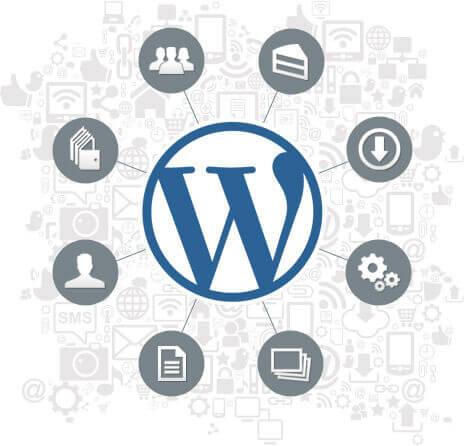 assistenza wordpress com