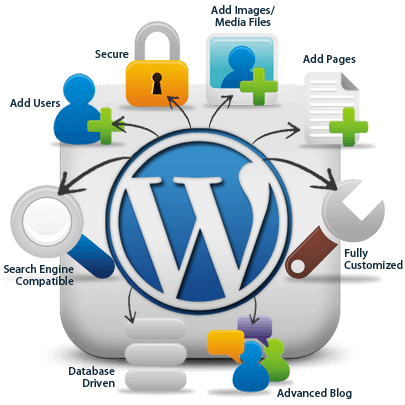 Esperto WordPress Roma